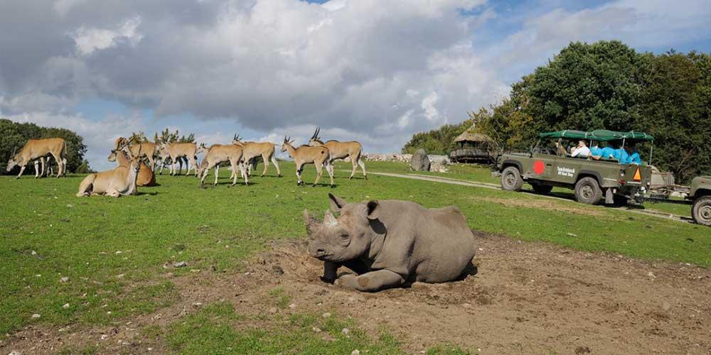 safari i danmark
