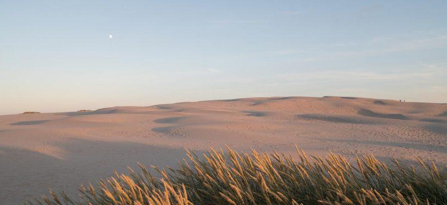 Sanddynen, som är den största i sitt slag i Danmark, vandrar 15-20 meter varje år.